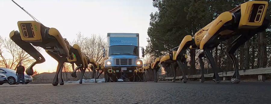 Kõhedavõitu video: nii tegutsevad Boston Dynamicsi robotokoerad karjana - nende jõud on suur
